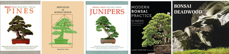 Bonsai Books August 2016