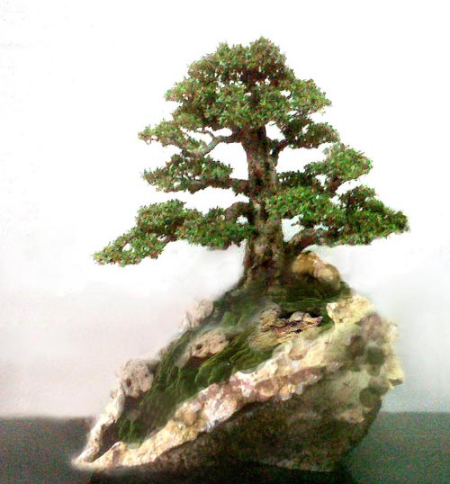 One of robert steven s two simulations of a tree in a rock like