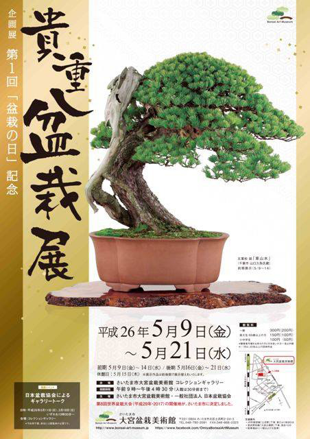 Bonsai Bark | Promoting and Expanding the Bonsai Universe | Page 96