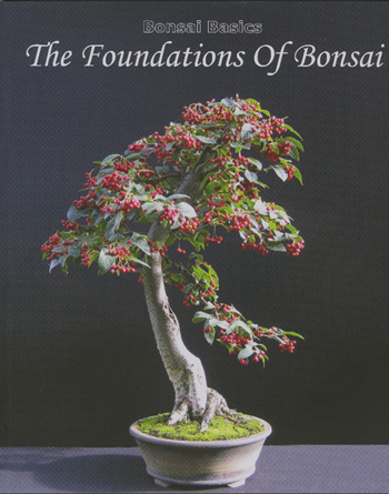 Harry Harringtonu0027s Foundations Of Bonsai
