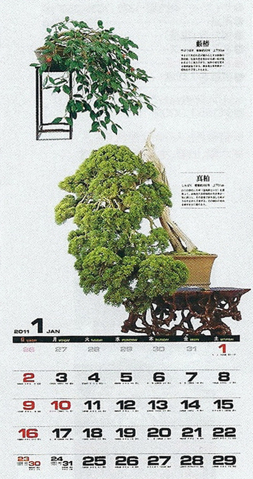 2011 Bonsai Calendars Have Arrived Bonsai Bark