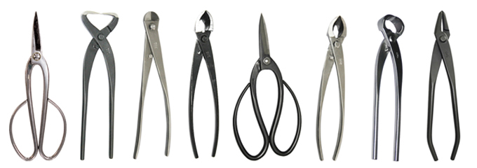 free bonsai wire  u0026 tool sale