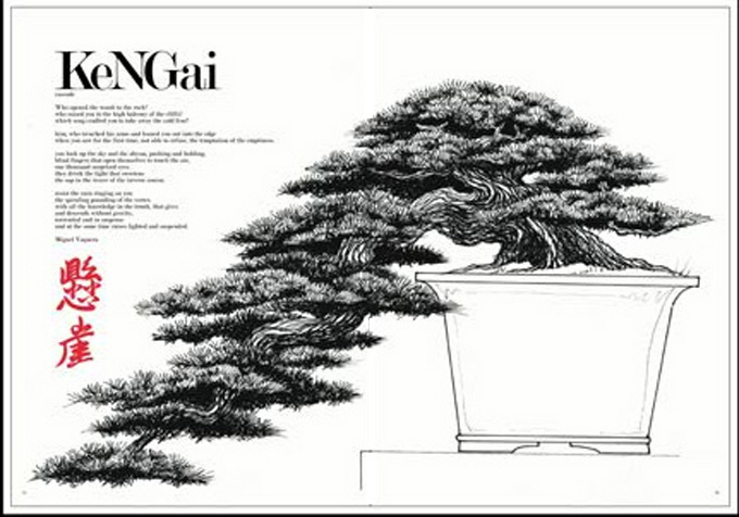50 bonsai detective art contest
