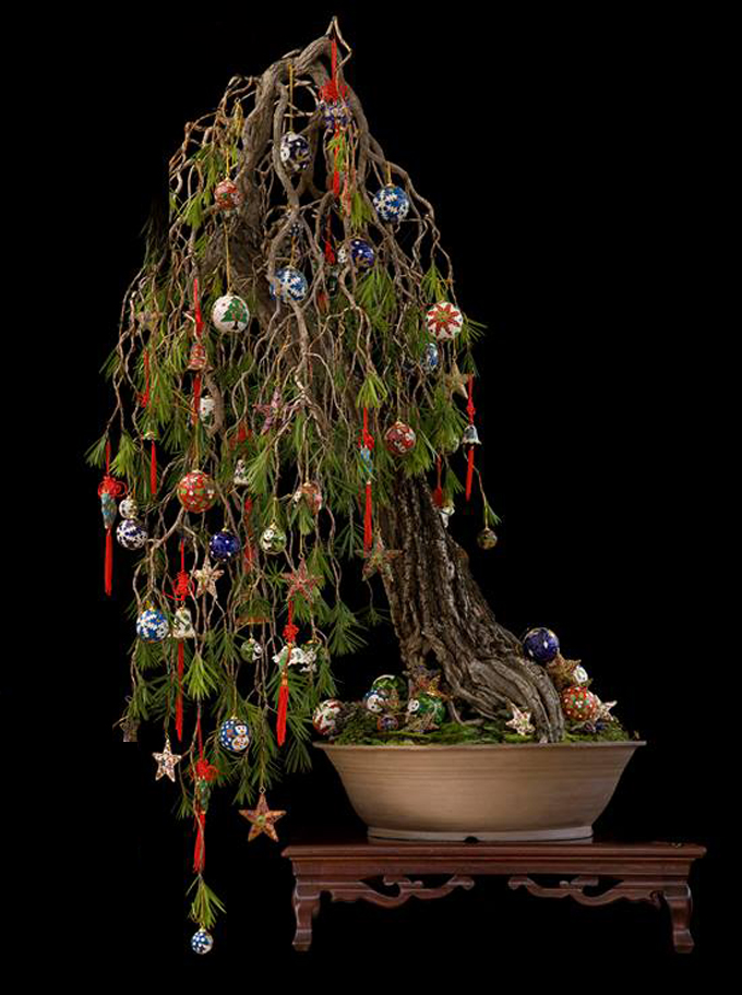 this is the same tree we showed last post but all decked out this time though many christmas trees have their charm and some are genuine works of art