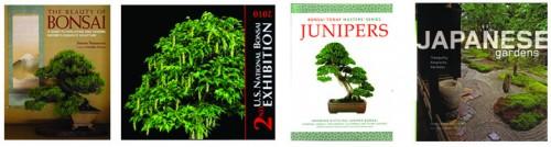 new books jan 2011